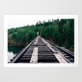 Train Tracks by the Lake & Forest Art Print
