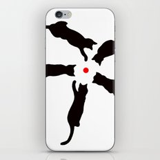 Laser Cats iPhone & iPod Skin