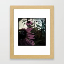 The bee at rest Framed Art Print