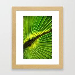 Green Burst Framed Art Print