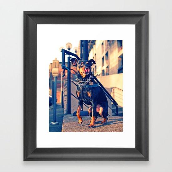 Little tough guy Framed Art Print