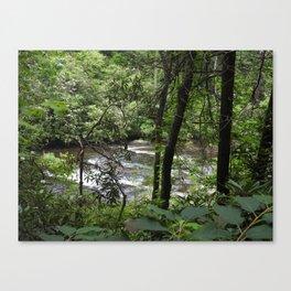 Abrams Creek Canvas Print