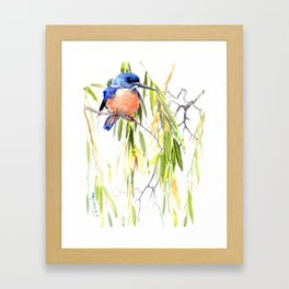KIngfisher and Weeping Willow Framed Art Print