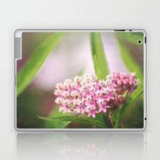Tiny Wonders Laptop & iPad Skin