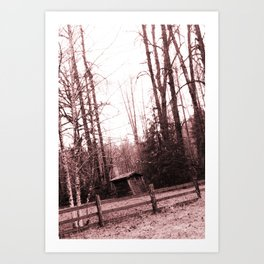 Ramshackle shack Art Print