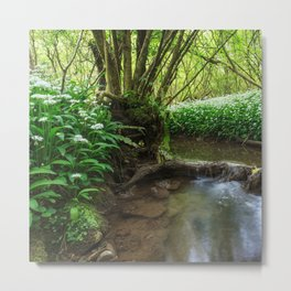 Flowers by the Stream Metal Print