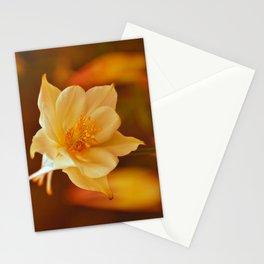 Columbine Beauty Stationery Cards