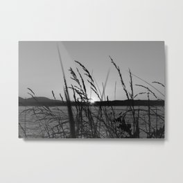 Seagrass Sway Metal Print