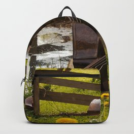 Double Bass Backpack
