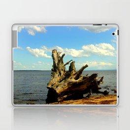 Metung ~ Lake King Laptop & iPad Skin