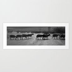 Sheep Crossing Art Print
