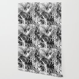 Palm Fronds In Black and White Abstract Photography Wallpaper