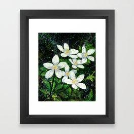 Sampaguita Framed Art Print
