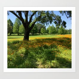 Orange Park Flowers Art Print
