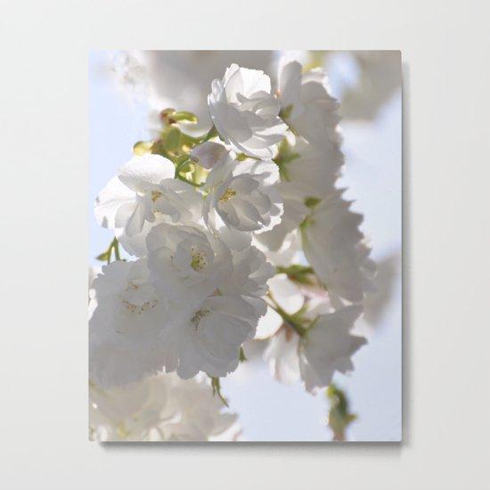 WHITE SPRING :) Metal Print