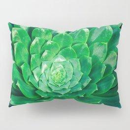 Botanical Gardens - Succulent #686 Pillow Sham