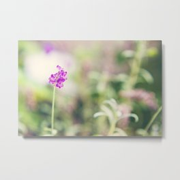 PURPLE POP FLOWER Metal Print