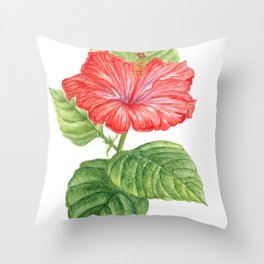 Hibisco (hibiscus rose-sinensis, L) Throw Pillow