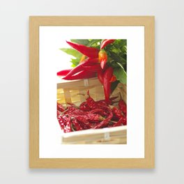 Hot chili pepper for kitchen design Framed Art Print