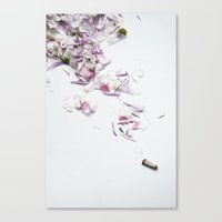 outkast Canvas Prints featuring FRESH AIR by Sophia Lupi