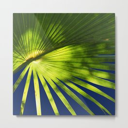 Tropical Plant in the Sun Metal Print