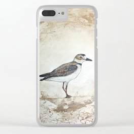 Plover Clear iPhone Case