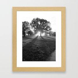 Oak of Righteousness Framed Art Print