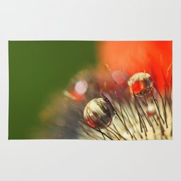 Poppy Drop Abstract Rug