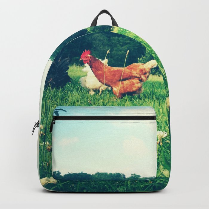 The Life of a Chicken Backpack