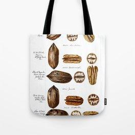 Nuts - Fruit Illustration Tote Bag