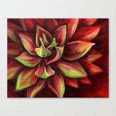 Red Succulent Cactus, Blue Flame Agave Canvas Print