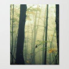Let the Silence Take Me Canvas Print