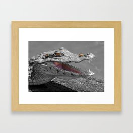 The smiling crocodile and the flies Framed Art Print