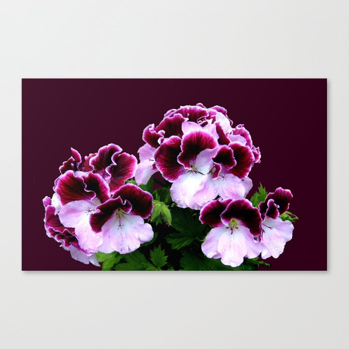 Pink, Purple, Flower Power Canvas Print