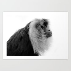 Winter Monkey Art Print