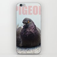 pigeon iPhone & iPod Skins featuring Pigeon by PKennyPhoto