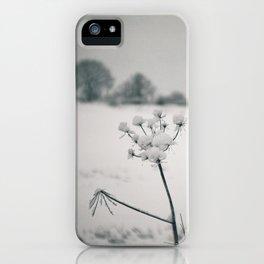 Snow Detail iPhone Case