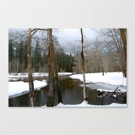 Falling Grace Canvas Print