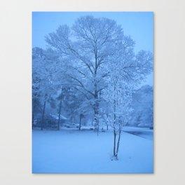 Snowy street Canvas Print