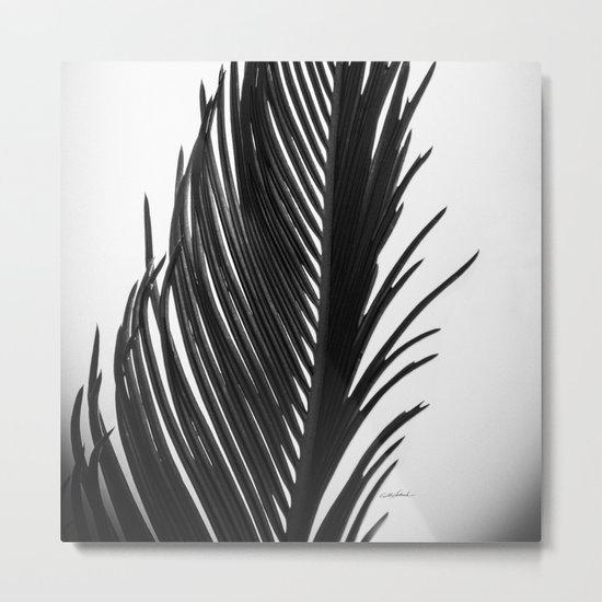 Palm: The Abstract in Black Metal Print