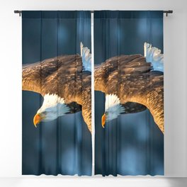 Marvelous Gracious American Bald Head Eagle Majestic Flying Gliding Through Air Close Up Ultra HD Blackout Curtain