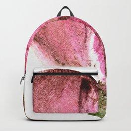 Ceren's Heart Shaped Box Backpack