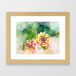 Lantana Framed Art Print