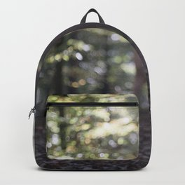 transition Backpack