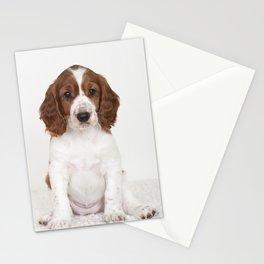 Wallovas Blondie Stationery Cards