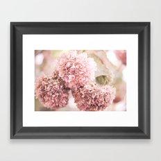 dusty pink Framed Art Print