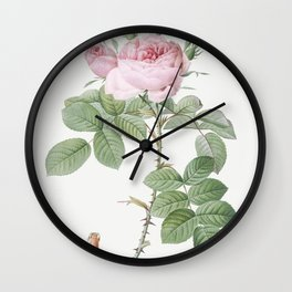 Rosa bifera officinalis also known as Rose of Perfume from Les Roses (1817-1824) by Pierre-Joseph Redoute Wall Clock