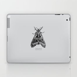 Cabbage Moth [Mamestra brassicae] Laptop & iPad Skin