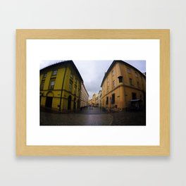 Poland 2 Framed Art Print