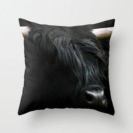 Minimalist Black Scottish Highland Cattle Portrait - Animal Photography Throw Pillow